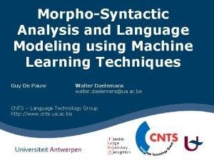 MorphoSyntactic Analysis and Language Modeling using Machine Learning