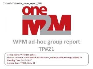 TP2016 0018 WPMstatusreportTP 21 WPM adhoc group report