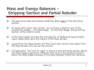 Mass and Energy Balances Stripping Section and Partial