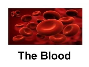 The Blood Blood Facts The average adult has