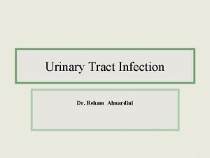 Urinary Tract Infection Dr Reham Almardini Urinary tract