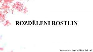 ROZDLEN ROSTLIN Vypracovala Mgr Albta Pelcov PETI SI