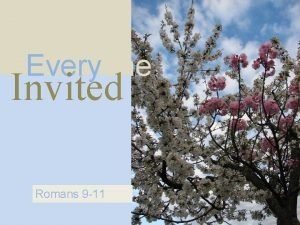 Everyone Invited Romans 9 11 Grafted In Romans