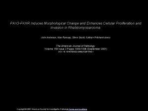 PAX 3 FKHR Induces Morphological Change and Enhances