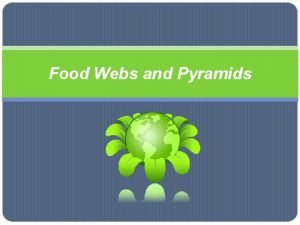 Food Webs and Pyramids Nutrients Food Chains and