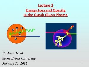 Lecture 2 Energy Loss and Opacity in the