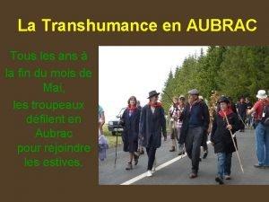 La Transhumance en AUBRAC Tous les ans la
