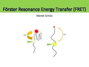 Frster Resonance Energy Transfer FRET Marek Scholz Activation