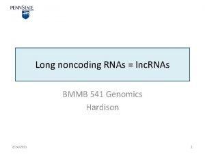 Long noncoding RNAs lnc RNAs BMMB 541 Genomics