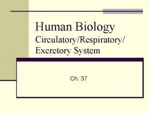 Human Biology CirculatoryRespiratory Excretory System Ch 37 Circulatory