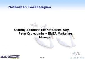 Net Screen Technologies Security Solutions the Net Screen