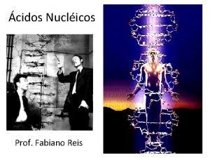 cidos Nuclicos Prof Fabiano Reis DNA cido desoxirrubonuclico