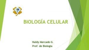 BIOLOGA CELULAR Naldy Mercado G Prof de Biologa