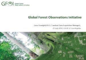 Global Forest Observations Initiative Gene FosnightUSGS Landsat Data