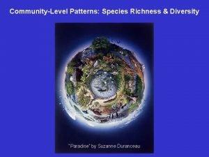 CommunityLevel Patterns Species Richness Diversity Paradise by Suzanne