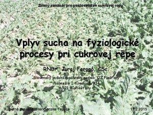 Zimn seminr pre pestovateov cukrovej repy Vplyv sucha