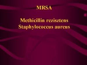 MRSA Methicillin rezisztens Staphylococcus aureus Etiolgia S aureus