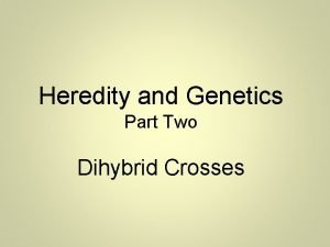 Heredity and Genetics Part Two Dihybrid Crosses Two