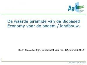 De waarde piramide van de Biobased Economy voor