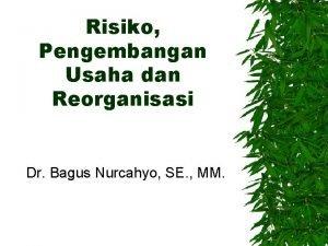 Risiko Pengembangan Usaha dan Reorganisasi Dr Bagus Nurcahyo