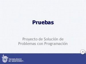 Pruebas Proyecto de Solucin de Problemas con Programacin