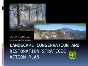 USDA Forest Service Southwestern Region LANDSCAPE CONSERVATION AND