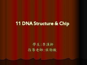 DNA structure DNA structure DNA structure DNA structure
