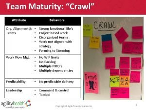 Team Maturity Crawl Attribute Roles Behaviors Org Alignment