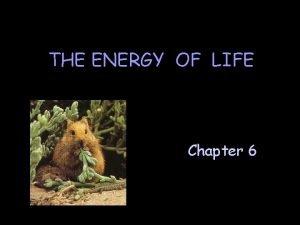 THE ENERGY OF LIFE Chapter 6 Bioenergetics study