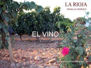 EL VINO S seor s seor El vino