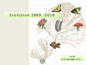 Evolution 2009 2010 LYON Le 16 dcembre 2009