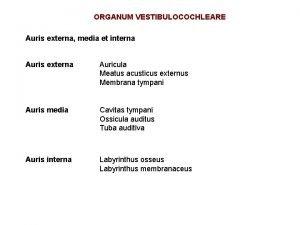 ORGANUM VESTIBULOCOCHLEARE Auris externa media et interna Auris
