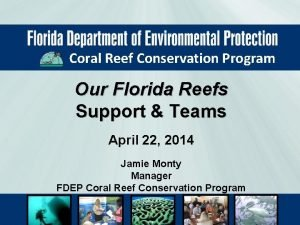 Coral Reef Conservation Program Our Florida Reefs Support