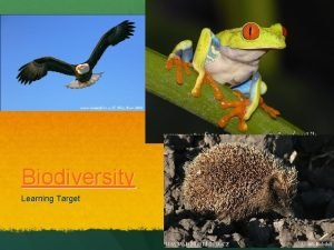 Biodiversity Learning Target BIODIVERSITY What is biodiversity The