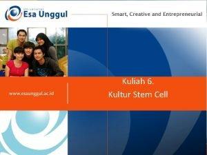 Kuliah 6 Kultur Stem Cell Mengapa kultur sel