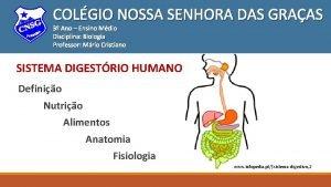 COLGIO NOSSA SENHORA DAS GRAAS 3 Ano Ensino