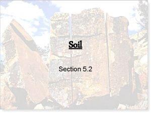 Soil Section 5 2 Soil Soil is an