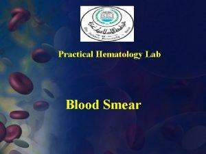 Practical Hematology Lab Blood Smear I Preparation Of