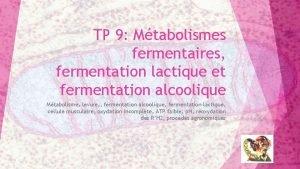 TP 9 Mtabolismes fermentaires fermentation lactique et fermentation
