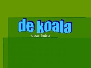 door Indra Een samenvatting Koalas Waar leven de