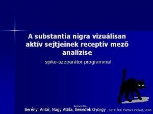 A substantia nigra vizulisan aktv sejtjeinek receptv mez