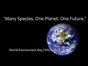 Many Species One Planet One Future World Environment