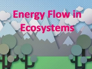 Energy Flow in Ecosystems All energy on Earth