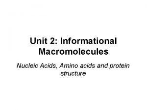 Unit 2 Informational Macromolecules Nucleic Acids Amino acids