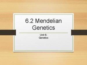 6 2 Mendelian Genetics Unit 6 Genetics Intro