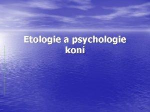 Etologie a psychologie kon Vvoj kon i lid