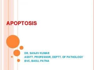 APOPTOSIS DR SANJIV KUMAR ASSTT PROFESSOR DEPTT OF
