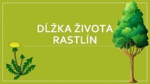 DKA IVOTA RASTLN Poda dky ivota delme rastliny