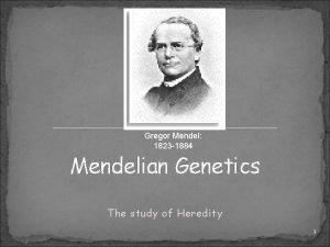 Gregor Mendel 1823 1884 Mendelian Genetics The study