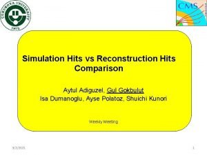 Simulation Hits vs Reconstruction Hits Comparison Aytul Adiguzel